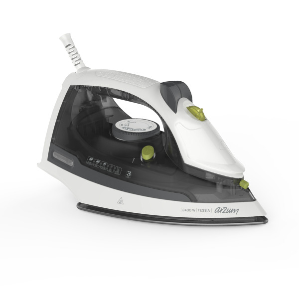 AR694 Tessia Steam Iron- Grey Green